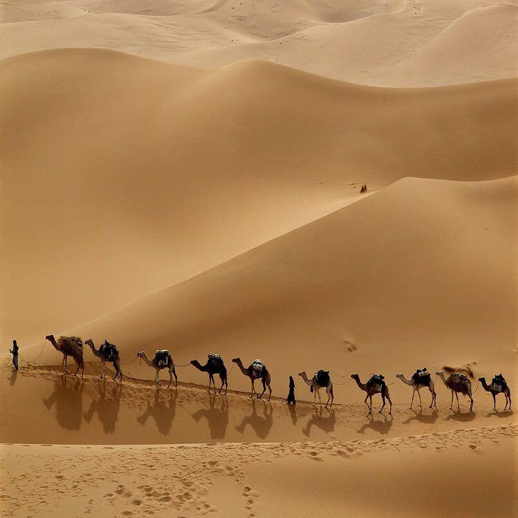 舞蹈沙漠风景桌面图片
