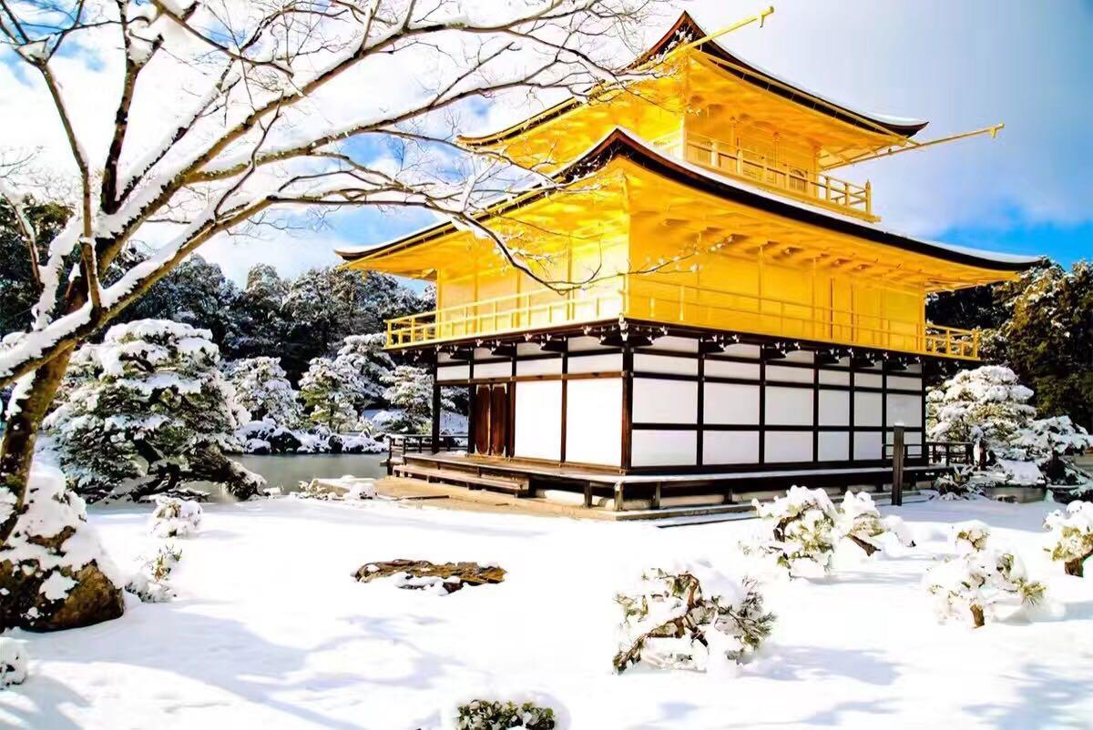 京都大阪等地民宿旅行策划(支持多日陪游)